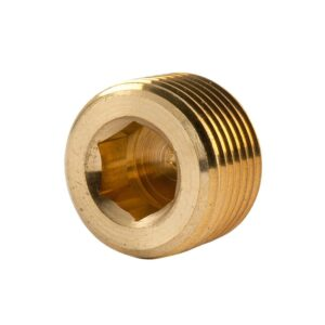Brass Plug 3/4 BSP